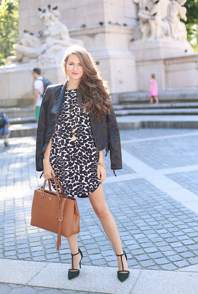 Leather jacket paired with leopard dress