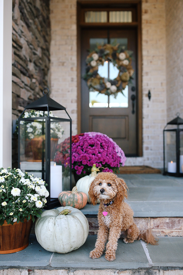 Fall Decorating Ideas House Updates Southern Curls Pearls